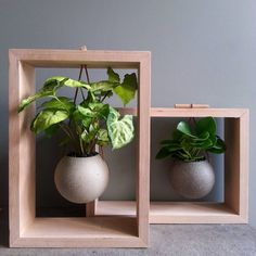 hanging plants indoor 41 Best Framed Planters Add Living Art to Your Walls is part of Plants - Living plant walls have been popular for years and now there's a minimalist way to t Hanging Plants, Potted Plants, Indoor Plants, Indoor Garden, House Plants Decor, Plant Decor, Graphisches Design, Design Ideas, House Design