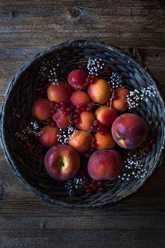 Aprikosen-Vanille-Pudding Hirse - reisender Ofen
