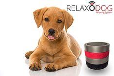 Relaxopet Entpannungssystem - RelaxoDog - für Hunde Dog Food Recipes, Labrador Retriever, Pets, Animals, Stress, Relax, Lion's Den, Pet Dogs, New Years Eve