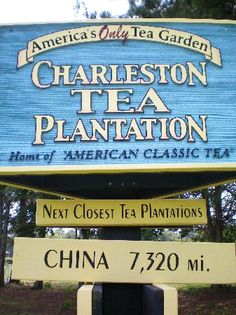 Charleston Tea Plantation. must go - the only tea grown in america!