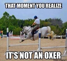 It's not an oxer | equestrian problems