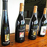 Catherine Marshall Wines.  She is the Pinot Noir Queen of South Africa.