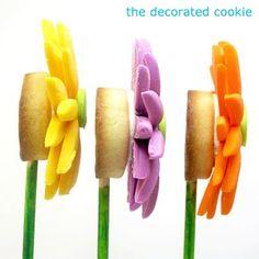 fondant gerbera daisy cookies