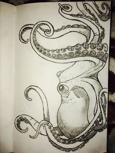 My octopus drawing by colette - Octopus Tattoo & Garden Pot Design & DIY Bathroom & Hairstyle For School & Ideas DIY Jewelry Octopus Drawing, Octopus Art, Octopus Sketch, Squid Drawing, Octopus Painting, Octopus Tattoos, Drawing Sketches, Cool Drawings, Sketching