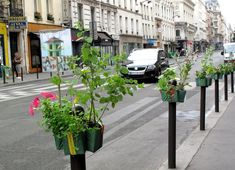 Recycled POTOGREEN Planters Disguise Parisian Parking Poles as Mini Gardens! Paris label hanging planters – Inhabitat - Sustainable Design Innovation, Eco Architecture, Green Building