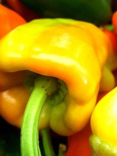 Farmers market bell pepper