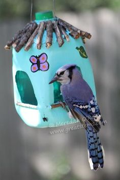 Wildlife Projects for Kids: Milk Jug Bird Feeders from great stems