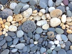 Pebbles Zentangle - Bing images