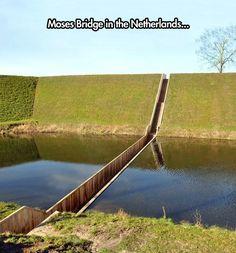 The Famous Moses Bridge