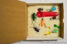 Mini Sensory Bin with Rice and Bugs.  I'd probably color up the rice and include a couple bug examining bottles (the ones with the magnifier on top).