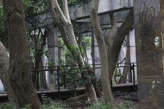 Casa de Detenção de São Paulo - Carandiru
