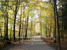 Bildschirmschoner Hintergrundbild Waldweg sonniger von LindasSmile, €4.00