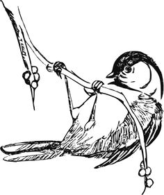 Here are the Popular Coloring Pictures Of Animals. This post about Popular Coloring Pictures Of Animals was posted under the Coloring Pages . Bird Coloring Pages, Coloring Pages For Kids, Coloring Books, Clip Art Vintage, Pyrography Patterns, Arte Sketchbook, Wood Burning Patterns, Bird Drawings, Colorful Pictures