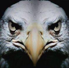 Maçı bekleyen Beşiktaş'lılar (temsili) pic.twitter.com/SqF8AwTceN