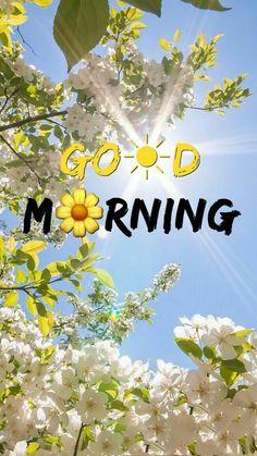 Latest Good Morning Images, Good Morning Beautiful Pictures, Good Morning Images Flowers, Morning Pictures, Beautiful Morning, Good Morning Husband, Good Morning Picture, Good Morning Good Night, Good Morning Wishes