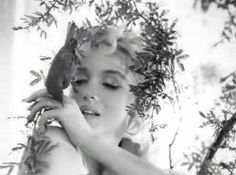MM by Cecil Beaton