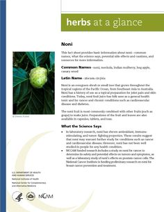 Noni. Full document available at http://nccam.nih.gov/health/herbsataglance.htm