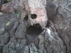 Close up of the screaming bird rock formation.  On the Sea of Cortez, off the coast of La Paz, Baja California Sur, Mexico.   Go to www.YourTravelVideos.com or just click on photo for home videos and much more on sites like this.