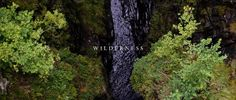This short film is based on the writings of naturalist, author and environmental philosopher John Muir. It is a an ode to wilderness, and was filmed in the Scottish Highlands.    For more information about the John Muir trust visit https://www.johnmuirtrust.org