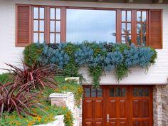 70 Indoor And Outdoor Succulent Garden Ideas