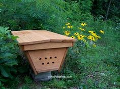 Top Bar Hive - An Alternative Beekeeping Method