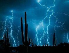 Wüste Blitz
