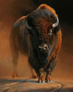 Bison by Edward Aldrich Wildlife Paintings, Wildlife Art, Animal Paintings, Animal Drawings, Buffalo Animal, Buffalo Art, Buffalo Pictures, Bison Tattoo, Buffalo Painting