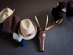 Faux taxidermy hat rack >> http://www.hgtvremodels.com/interiors/traditional-midcentury-modern-apartment/pictures/index.html?soc=pinterest
