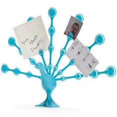 Freddy Feathers - Memo Note Holder for Desktop Notes Turquoise Peacock (Office Product)  http://www.usb-blog.de/preview.php?p=B004S3QGSU