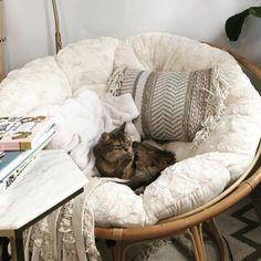 36 Amazing Papasan Chair Design Ideas For Your Living Room Unique Home Decor, Cheap Home Decor, Bedroom Chair, Bedroom Decor, Modern Bedroom, Decorating Bedrooms, Diy Zimmer, Papasan Chair, Chair Cushions