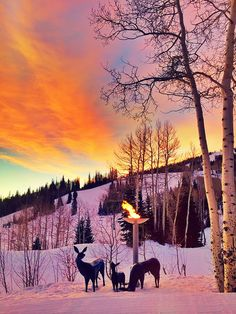 Watch the Sunrise at The Stein Eriksen Lodge Hotel and Spa at Deer Valley Resort in Park City, Utah.