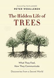 Nature books from 2016. I especially want to read The Hidden Life of TREES!