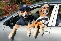 cops and robbers...oh my gosh...I have been giggling at all these photo's for the past 15 mins!!!
