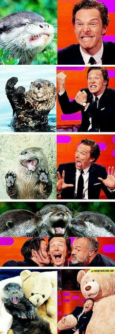Benedict the Otter