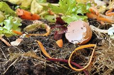 12 Things Not to Put in Your Permaculture Compost Pile Organic Gardening, Gardening Tips, Vegetable Gardening, Composting Methods, Tarte Vegan, How To Make Compost, Making Compost, Water From Air, Bokashi