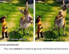"""There are lots of ass jokes in Shrek. I watched it recently (a few months ago but it feels pretty recent to me) and there are a ton of """"hidden'' adult jokes in there but they were pretty obvious."""