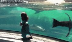 OMG, That little girl fell down... is she OK? (gif) LOL