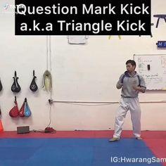 Martial Arts Taekwondo, Muay Thai Question Mark Kick