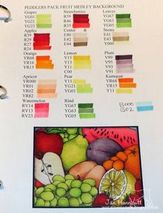 Copic Coloring Book - Fruit Medley Colors