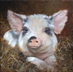 """Cute smiling baby pig--Let's say """"no"""" to pork."""