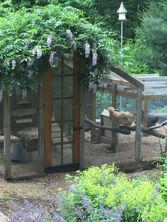 Wisteria on the roof of the coop adds shade. Recycled door Wisteria on the roof of the coop adds shade. Recycled door Easy Backyard Chicken CooLOVE THIS COOP ! SomedayChicken coop by Chicken Coup, Best Chicken Coop, Chicken Coop Plans, Building A Chicken Coop, Fancy Chicken Coop, Walk In Chicken Coop, Chicken Garden, Backyard Chicken Coops, Chickens Backyard