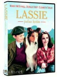 Lassie Palaa Kotiin DVD (Elizabeth Taylor)