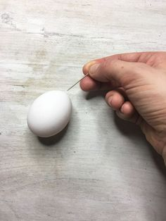 Tired of painting Easter eggs? This crazy idea is for you