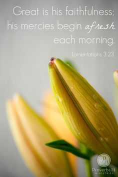 Great is His faithfulness...Lamentations 3:23