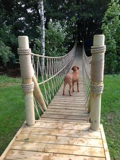 Rope Bridge project by Treehouse Life across a 20m river in the Lake District, UK