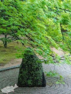 高野山金剛峰寺 蟠龍庭(ばんりゅうてい)和歌山県にある高野山は弘法大師が修禅の道場として下賜された。ユネスコ世界遺産に登録された日本仏教の聖地の見所を集めました。