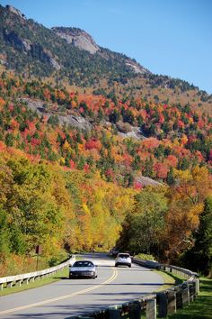 200 best fall color in nc mountains images on pinterest nc