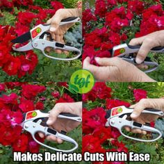 TGF ratchet pruners are great for delicate and small snips. This...