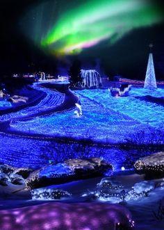 西日本初・京都最大!!イルミネーションと雪、オーロラのコラボレーション「京都イルミエール2013」