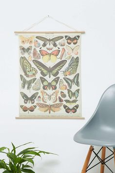 Poster mit Schmetterlingen